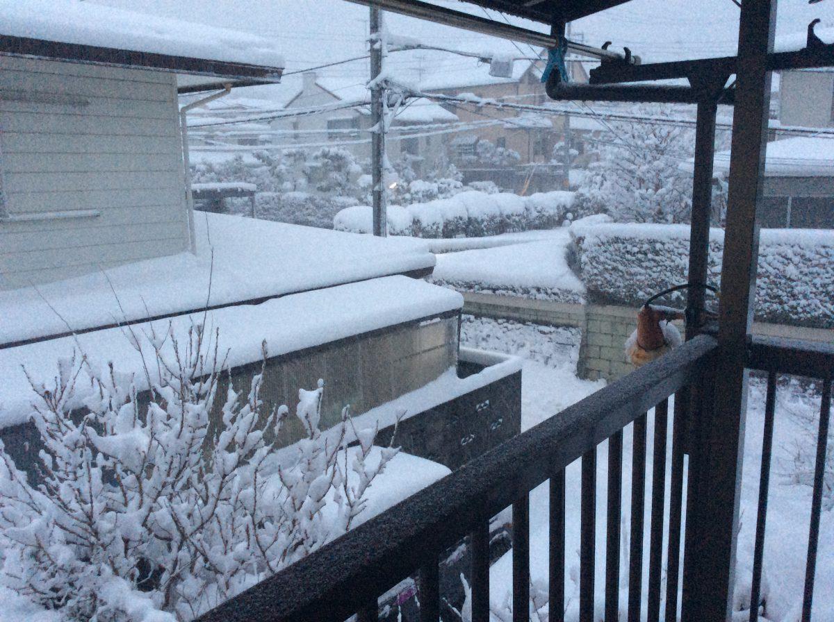 津久井は雪です