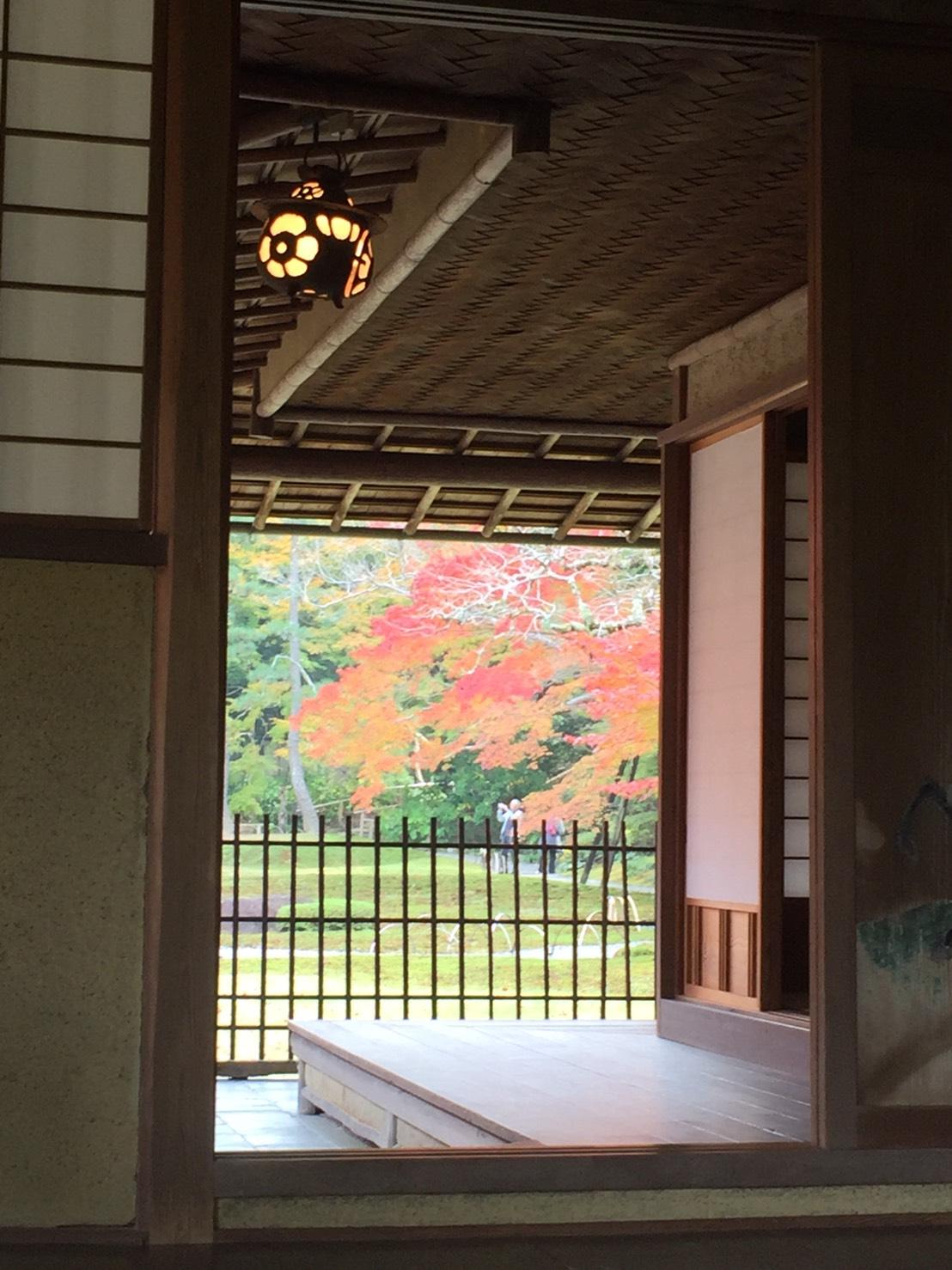 京都,奈良に行ってきました。