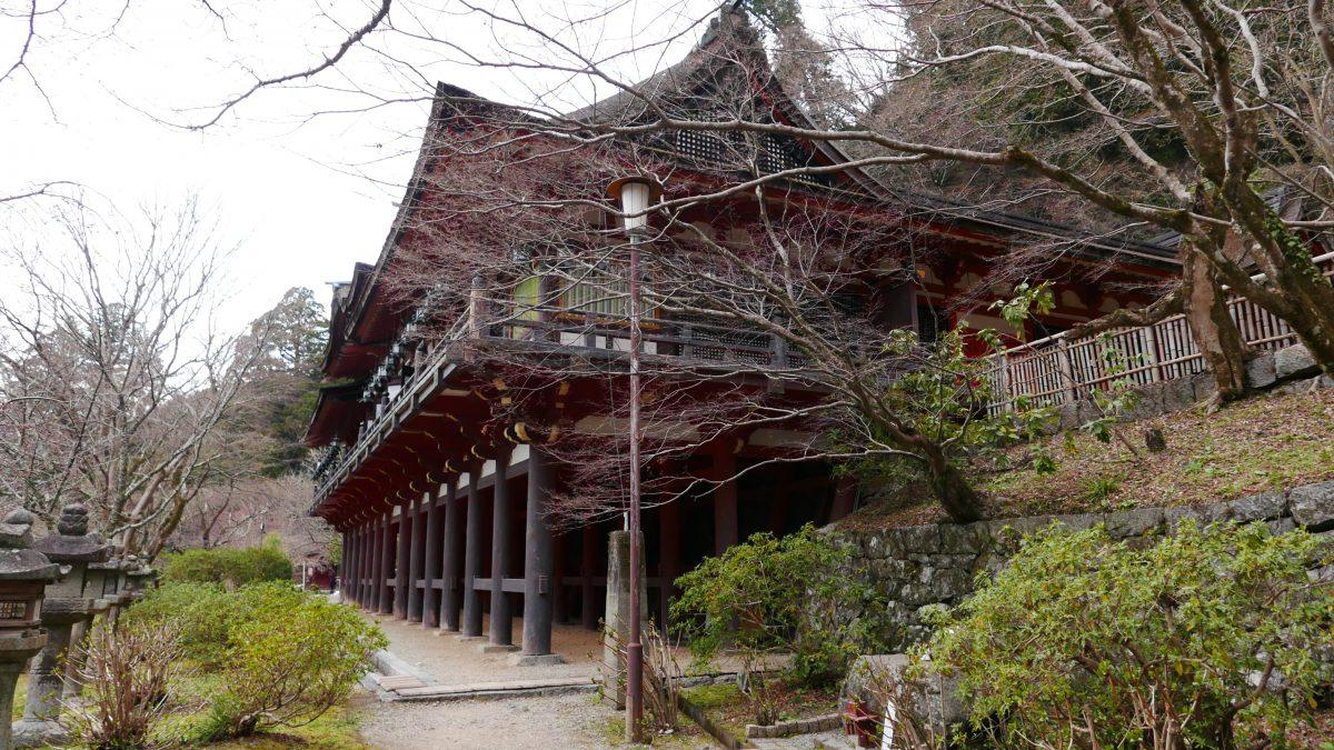 奈良に来ました。